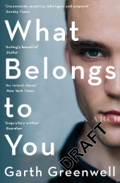 What Belongs to You Cover