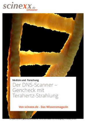 Der DNS-Scanner