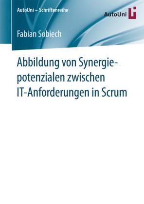Abbildung von Synergiepotenzialen zwischen IT-Anforderungen in Scrum