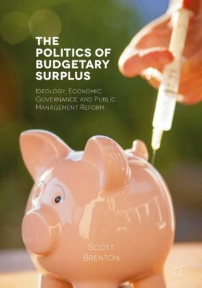 The Politics of Budgetary Surplus