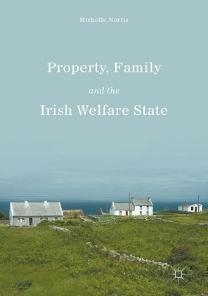 Property, Family and the Irish Welfare State