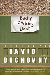 Bucky F_cking Dent Cover