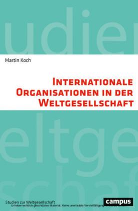 Internationale Organisationen in der Weltgesellschaft