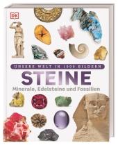 Steine Cover