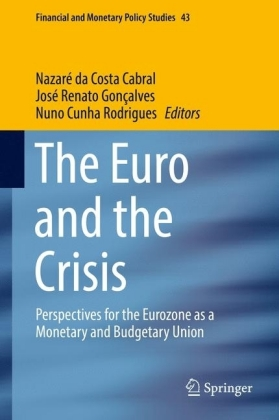 The Euro and the Crisis