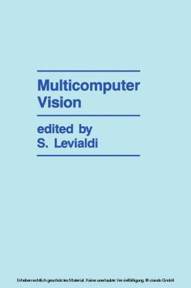 Multicomputer Vision