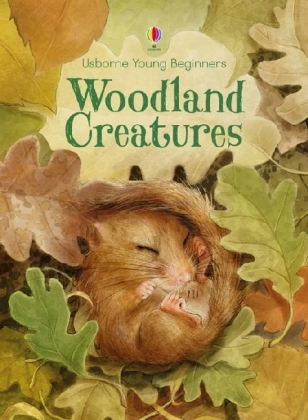 Young Beginners Woodland Creatures