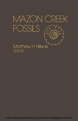 Mazon Creek Fossils