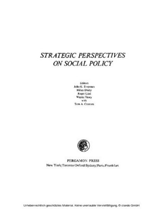 Strategic Perspectives on Social Policy