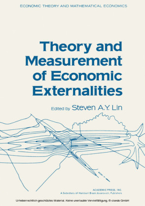 Theory and Measurement of Economic Externalities