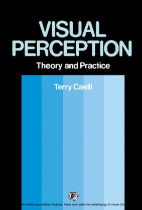 Visual Perception: Theory and Practice