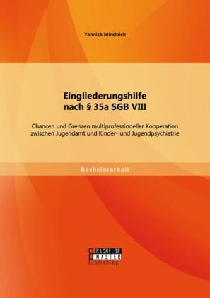 Eingliederungshilfe nach 35a SGB VIII: Chancen und Grenzen multiprofessioneller Kooperation zwischen Jugendamt und Kinder- und Jugendpsychiatrie