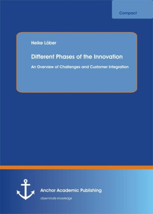 Different Phases of the Innovation Process