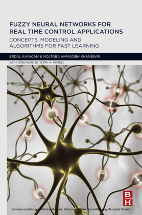 Fuzzy Neural Networks for Real Time Control Applications