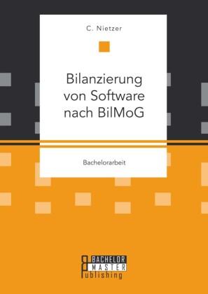Bilanzierung von Software nach BilMoG