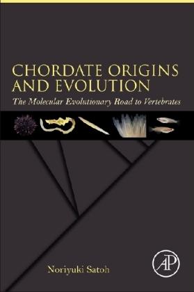 Chordate Origins and Evolution