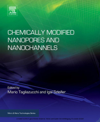 Chemically Modified Nanopores and Nanochannels