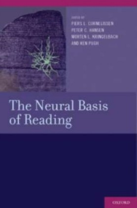 Neural Basis of Reading