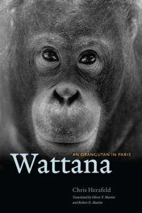 Wattana