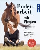Bodenarbeit mit Pferden Cover