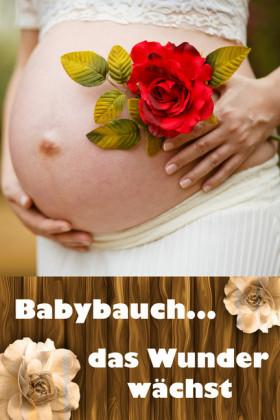 Babybauch...das Wunder wächst