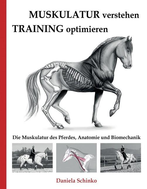 Muskulatur verstehen - Training optimieren (eBook) | HOFER life