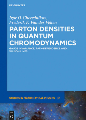 Parton Densities in Quantum Chromodynamics