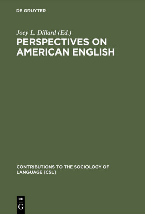 Perspectives on American English