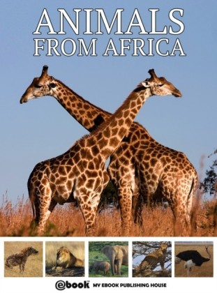 Animals from Africa