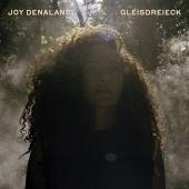 Gleisdreieck, 1 Audio-CD Cover