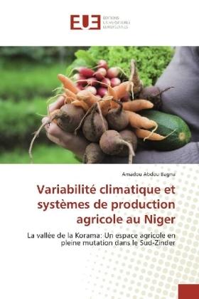 Variabilité climatique et systèmes de production agricole au Niger