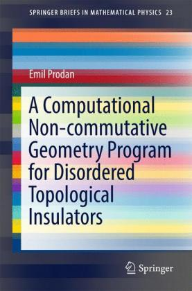 A Computational Non-commutative Geometry Program for Disordered Topological Insulators