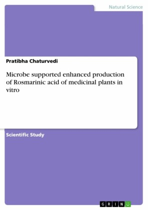 Microbe supported enhanced production of Rosmarinic acid of medicinal plants in vitro