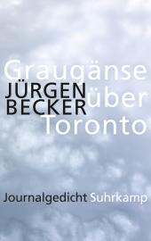 Graugänse über Toronto Cover