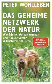 Das geheime Netzwerk der Natur Cover
