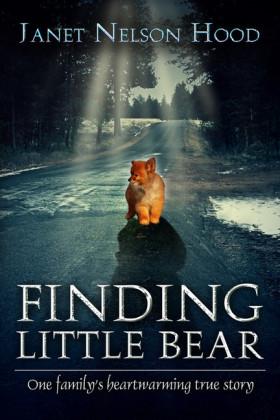 Finding Little Bear