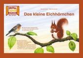 Kamishibai: Das kleine Eichhörnchen