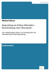 Regensburg im frühen Mittelalter - Beschreibung einer Metropole?