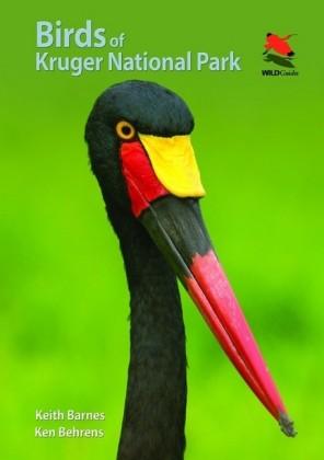 Birds of Kruger National Park