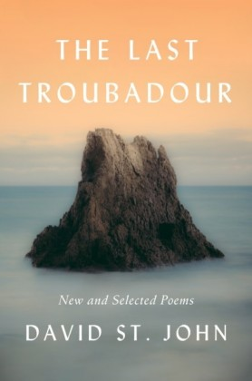 Last Troubadour