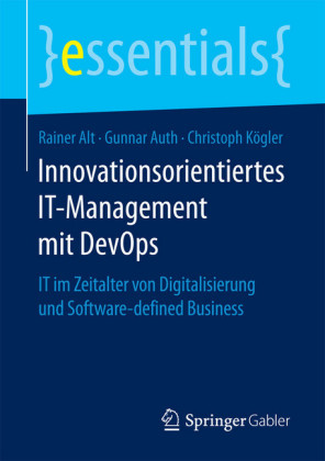 Innovationsorientiertes IT-Management mit DevOps