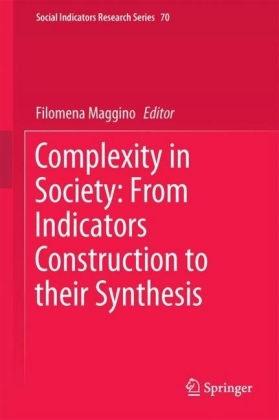 Complexity in Society: From Indicators Construction to their Synthesis