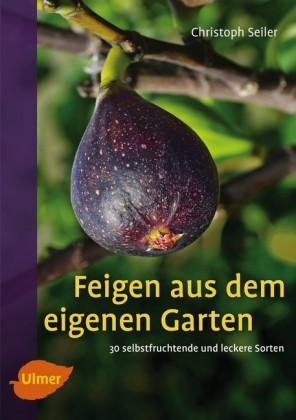 Feigen aus dem eigenen Garten