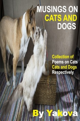 Musings On Cats And Dogs