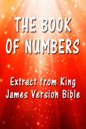 The Book of Numbers