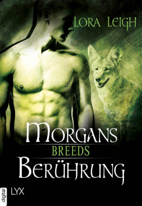 Breeds - Morgans Berührung