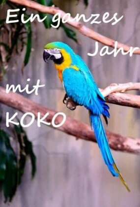 Ein ganzes Jahr mit Koko