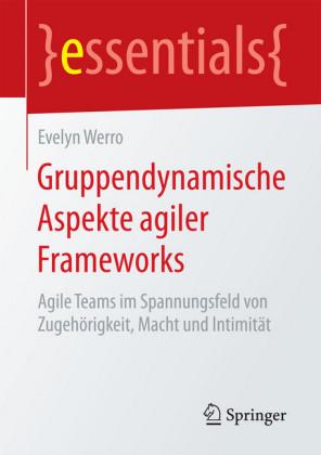 Gruppendynamische Aspekte agiler Frameworks