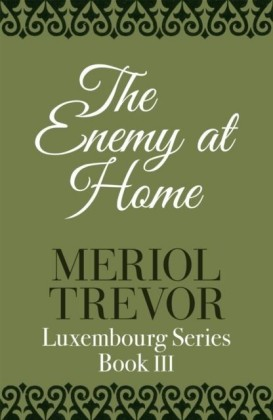 Enemy At Home