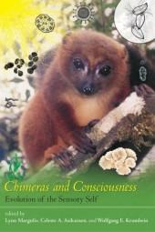Chimeras and Consciousness